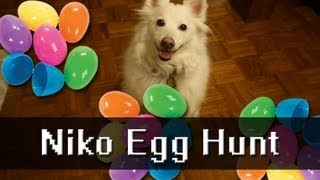 Games with Niko: Dog Egg Hunt