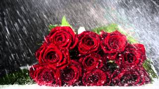 Romantic Music | Beautiful Piano Music & Rain | Sleep, Relax, Study, Meditation