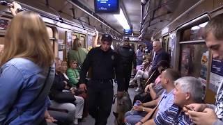 Полиция с собаками в киевском метро