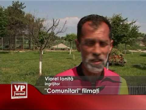 Comunitari filmaţi