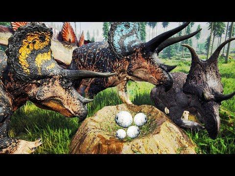 DEVORARAM O FILHOTE! Super Manada de Triceratops + Ninhada, Defendendo Território | The Isle | PT/BR