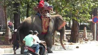 preview picture of video 'Phnom Penh elephant ride'