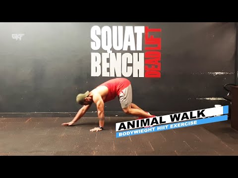 Animal  Walk In/Out #fitness