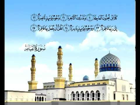 Сура Воскресение <br>(аль-Кыяма) - шейх / Саад Аль-Гомеди -