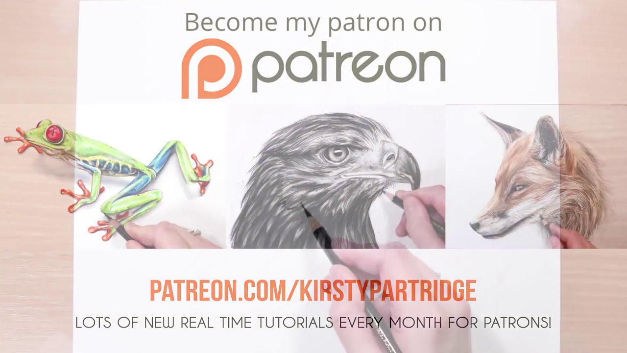 how to draw realistic fur with coloured pencil drawing tutorial by kirsty partridge art