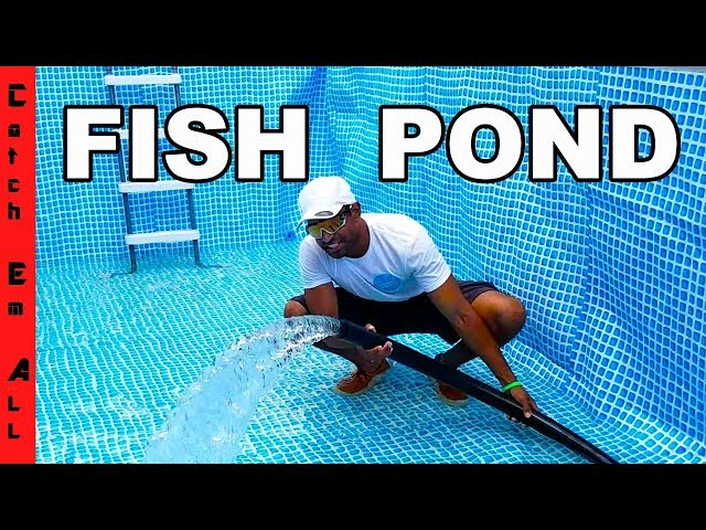 TIME for FISH in the POOL POND!
