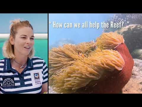 A day in the life of a Reef Master Guide