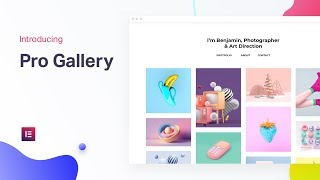 Introducing Pro Gallery: The Best Gallery Solution for WordPress
