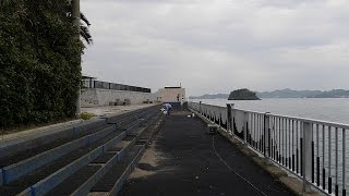 「釣れない」愛媛県高浜観光港公園釣り