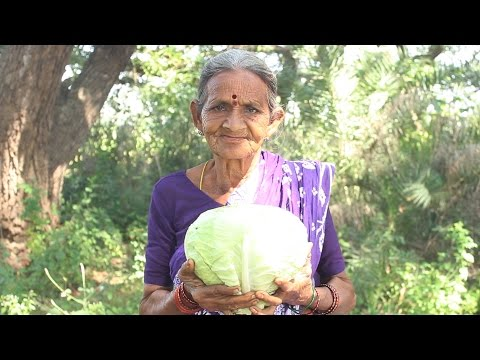 Video How To Cook Cabbage Recipes Village Style By My Grandma || Myna Street Food