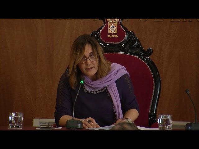 08/03/2019 - Pleno Institucional conmemorativo