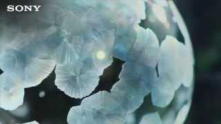 Magic Ice Bubbles — Diamonds - Josef Salvat [Rihanna]