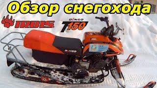 Разборный снегоход для рыбалки и охоты ирбис 150
