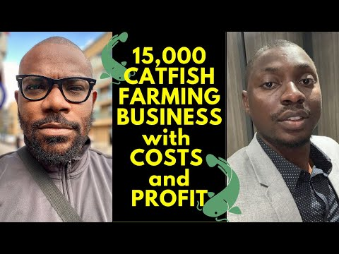 , title : 'How to start 15,000 Catfish Farming in Nigeria with Costs and Profit
