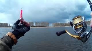 Форум 44 рыбалка