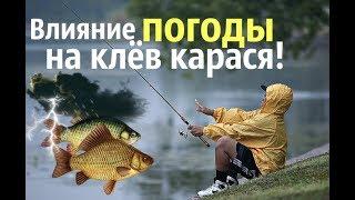 В какие дни рыба лучше клюет
