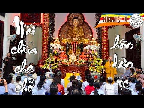 Mái Chùa che chở hồn Dân tộc (22/1/2013)