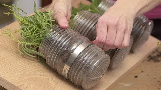 How To Plant An Indoor Hanging Herb Garden With Gina
