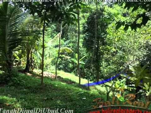 Properti Strategis 1.200 m2 Lahan  view sawah dan tebing di Ubud TJUB422