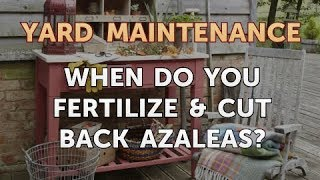 When Do You Fertilize & Cut Back Azaleas?