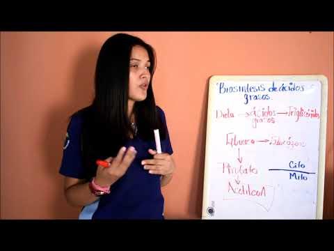 Gliquidona en la diabetes
