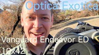 Vanguard Endeavor ED 10x42, the DEFINITIVE Review #77