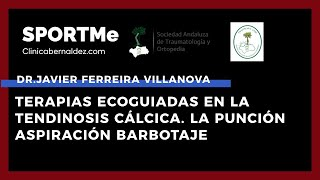 Terapias Ecoguiadas en la Tendinosis Cálcica - Dr.Javier Ferreira Villanova