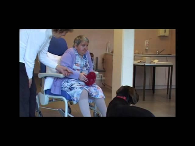 La thérapie à médiation animale : un soin pas comme les autres