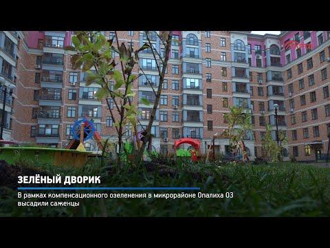 Зелёный дворик — Администрация городского округа Красногорск Московской области