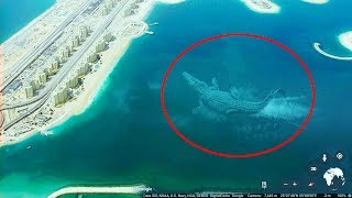 Mysterious Sea Creatures Spotted On Google Earth