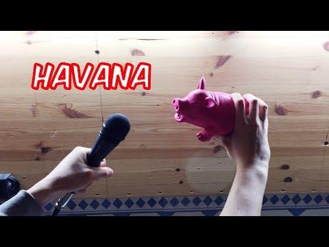 Camila Cabello - Havana 'Pig Cover'