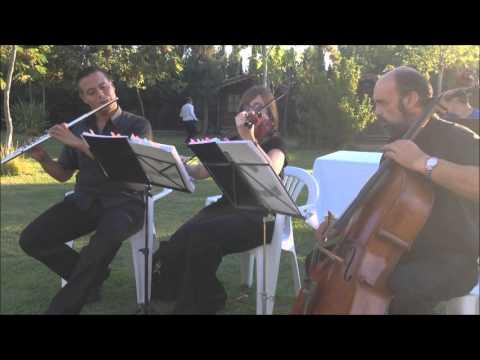 Musica para tu boda en Alicante y Murcia