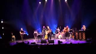 Sufjan Stevens Chicago 2015 live Geneva w/ Basia Bulat