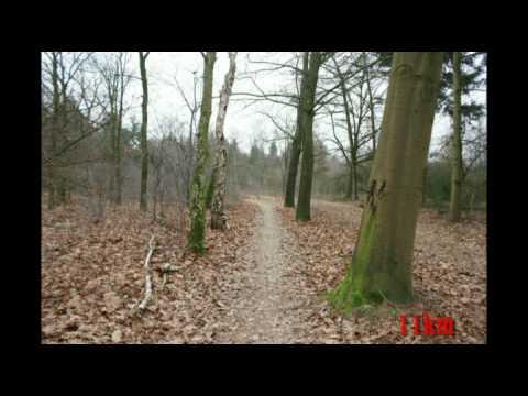 Halve Marathon Sint Anthonis