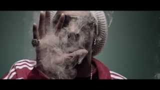 Snoop Lion   Smoke The Weed ft  Collie Buddz Music Video with Lyrics( Official Music Video High Quality Mp3)