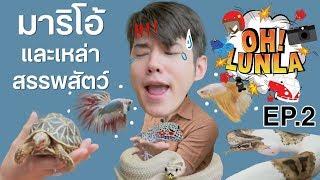 โอ้ลั้นลา OH Lunla EP.2 มาริโอ้ และเหล่าสรรพสัตว์!