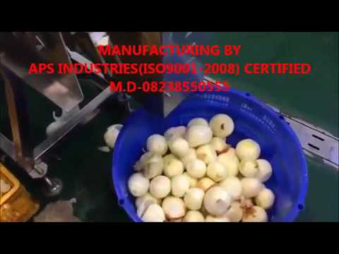Dry Onion Peeling Machine