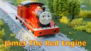 "Golden Bear Shot #3 ""James The Red Engine"""