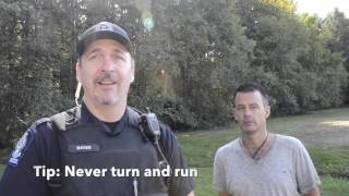 Cougar Encounter Tips - this may save your life!