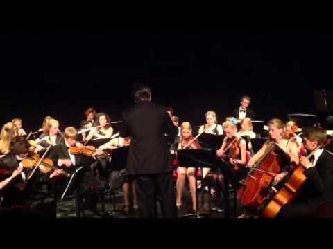Flevolands Jeugd Symfonie Orkest geeft gratis 'vriendenconcert' in Dronten