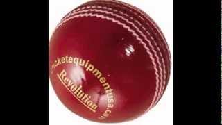 Cricket Equipment USA - Cricket Bats, Balls & Protective Gear