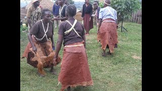 Why Abagusi culture allows women to marry women