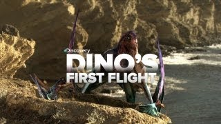 Baby Dinosaur's First Flight!
