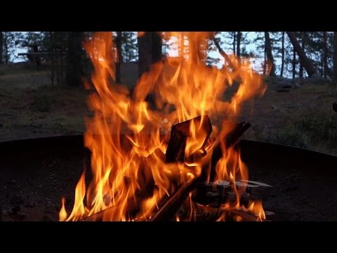 Virtual Campfire with Crackling Fire Sounds 2 HOURS (Full HD 1080p)