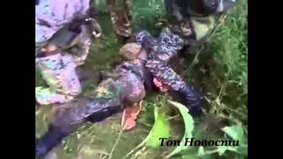 Взятие в плен укрофашиста из батальона Айдар