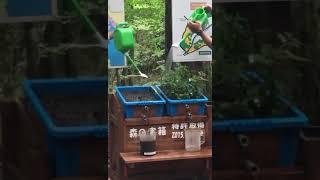 La importancia de cuidar el suelo, la vegetación como filtro natural