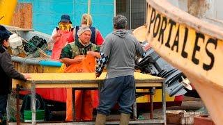USM  - Reutilización Residuos Pesca Artesanal Caleta Portales