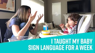 I Taught My Baby Sign Language For A Week