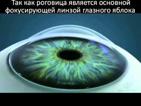 Зрение вне глаз исхаков р л