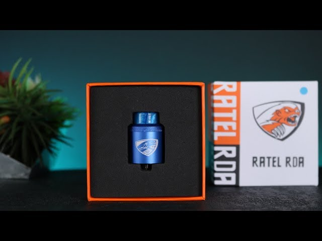 Kaees Ratel RDA Review